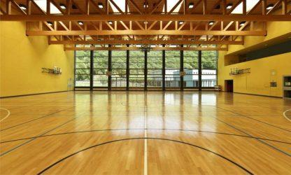 public school, interior wide gym